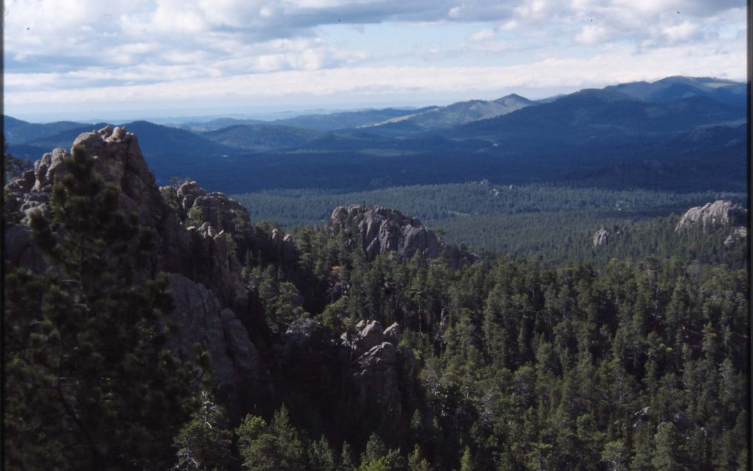 Black Hills National Forest – South Dakota